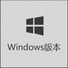 Windows 版本